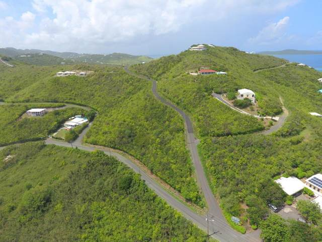 61 North Grapetree Eb, St. Croix, VI 00820 (MLS #20-231) :: Coldwell Banker Stout Realty