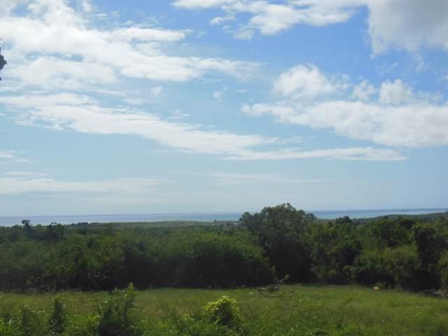 141 Bugby Hole Co, St. Croix, VI 00820 (MLS #20-24) :: The Boulger Team @ Calabash Real Estate