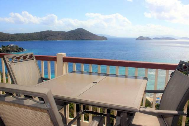 4 Smith Bay Ee, St. Thomas, VI 00802 (MLS #20-244) :: Hanley Team | Farchette & Hanley Real Estate