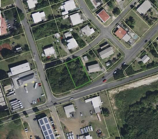 174&175 Peter's Rest Qu, St. Croix, VI 00820 (MLS #20-258) :: Hanley Team | Farchette & Hanley Real Estate