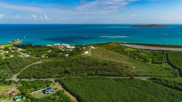 Rem 29 Green Cay Ea, St. Croix, VI 00820 (MLS #20-316) :: The Boulger Team @ Calabash Real Estate