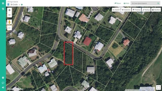 216 Hermon Hill Co, St. Croix, VI 00820 (MLS #20-336) :: Hanley Team | Farchette & Hanley Real Estate