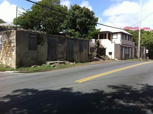 18 Hospital Street Ch, St. Croix, VI 00820 (MLS #20-340) :: Hanley Team | Farchette & Hanley Real Estate