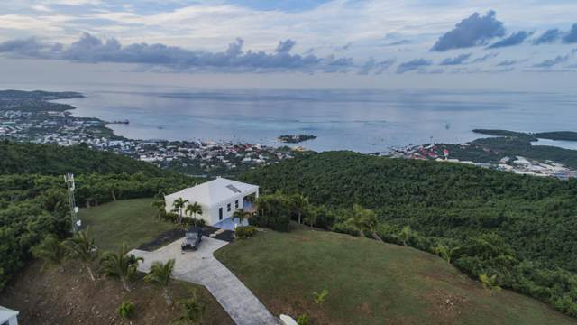 49 Recovery Hill Co, St. Croix, VI 00820 (MLS #20-37) :: Coldwell Banker Stout Realty