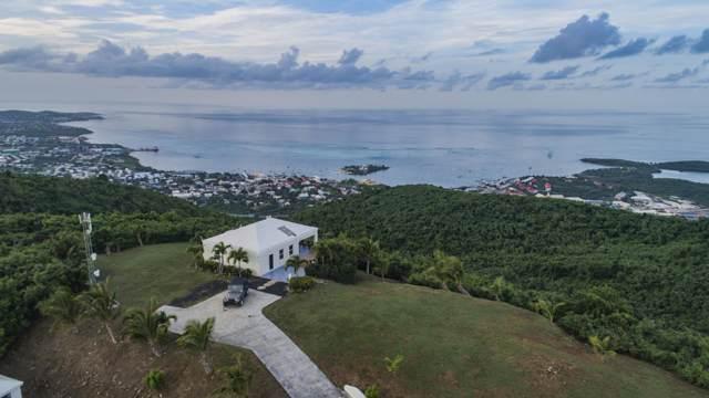 49 Recovery Hill Co, St. Croix, VI 00820 (MLS #20-37) :: Hanley Team | Farchette & Hanley Real Estate