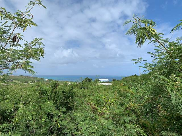 182 Cotton Valley Eb, St. Croix, VI 00820 (MLS #20-373) :: Coldwell Banker Stout Realty