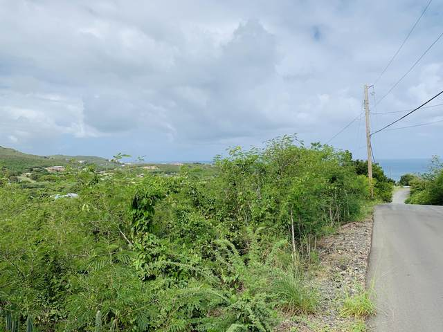 181 Cotton Valley Eb, St. Croix, VI 00820 (MLS #20-418) :: Coldwell Banker Stout Realty