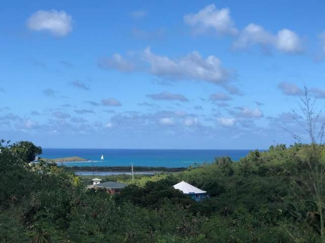 104 Southgate Farm Ea, St. Croix, VI 00820 (MLS #20-435) :: Coldwell Banker Stout Realty