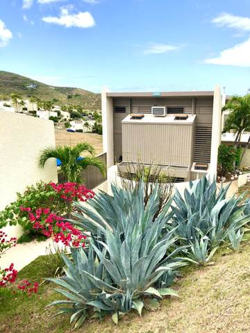 142 Teagues Bay Eb, St. Croix, VI 00820 (MLS #20-461) :: Hanley Team | Farchette & Hanley Real Estate