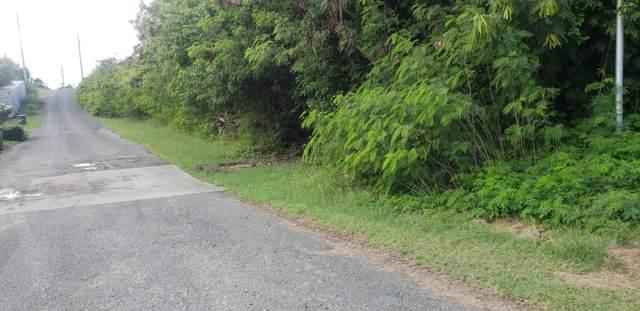 591 Barren Spot Ki, St. Croix, VI 00820 (MLS #20-50) :: Coldwell Banker Stout Realty