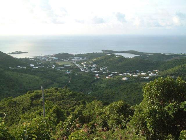 3 Mt. Welcome Ea, St. Croix, VI 00820 (MLS #20-526) :: Coldwell Banker Stout Realty
