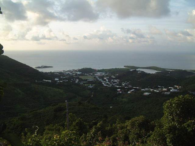 4 Mt. Welcome Ea, St. Croix, VI 00820 (MLS #20-530) :: Coldwell Banker Stout Realty