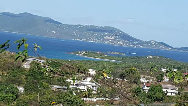 20-21-24 Smith Bay Ee, St. Thomas, VI 00802 (MLS #20-536) :: Hanley Team | Farchette & Hanley Real Estate