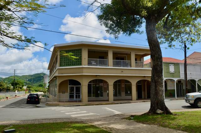 2-B King Street Fr, St. Croix, VI 00840 (MLS #20-578) :: Hanley Team | Farchette & Hanley Real Estate