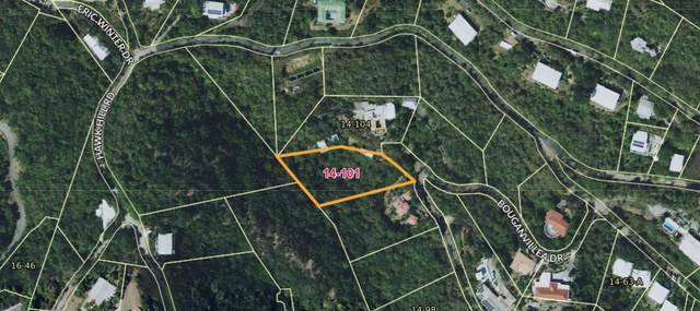 14-101 Frenchman Bay Fb, St. Thomas, VI 00802 (MLS #20-585) :: Hanley Team | Farchette & Hanley Real Estate