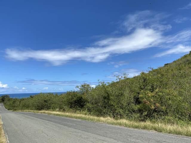 30 North Grapetree Eb, St. Croix, VI 00820 (MLS #20-588) :: Hanley Team | Farchette & Hanley Real Estate