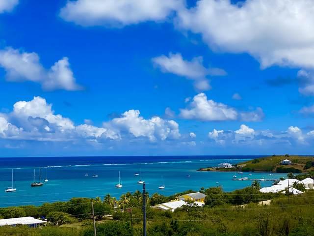 29-B North Slob Eb, St. Croix, VI 00820 (MLS #20-590) :: Hanley Team | Farchette & Hanley Real Estate