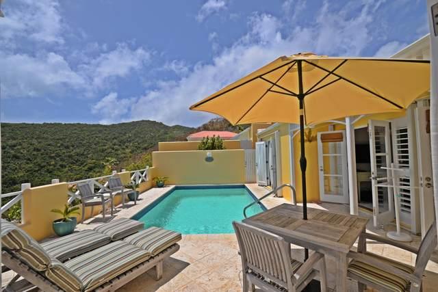 6 Teagues Bay Eb, St. Croix, VI 00820 (MLS #20-599) :: Hanley Team | Farchette & Hanley Real Estate
