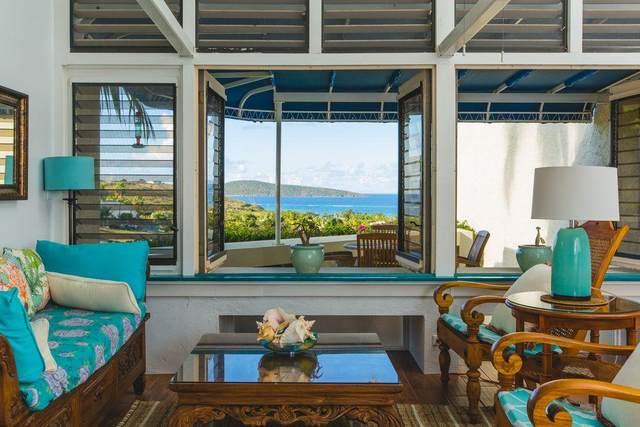 150 Teagues Bay Eb, St. Croix, VI 00820 (MLS #20-601) :: Hanley Team | Farchette & Hanley Real Estate