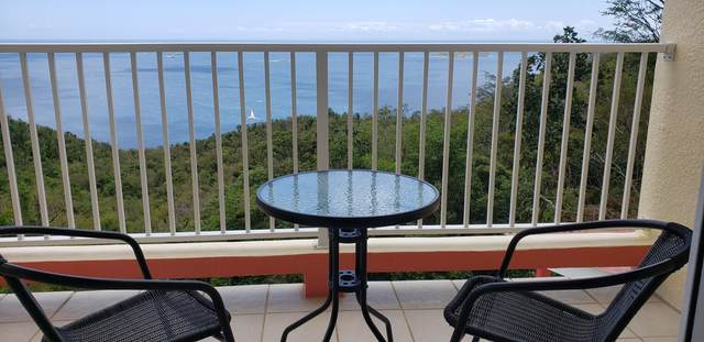 69 /Middle Fortuna We, St. Thomas, VI 00802 (MLS #20-618) :: Coldwell Banker Stout Realty