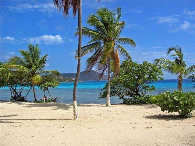 101&102 Smith Bay Ee, St. Thomas, VI 00802 (MLS #20-620) :: Coldwell Banker Stout Realty