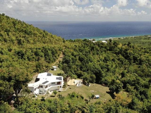 79A & 148 Belvedere Nb, St. Croix, VI 00820 (MLS #20-634) :: Coldwell Banker Stout Realty