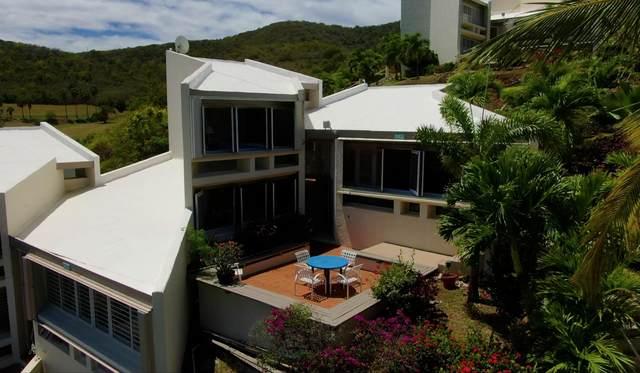 411 Teagues Bay Eb, St. Croix, VI 00820 (MLS #20-647) :: Hanley Team | Farchette & Hanley Real Estate