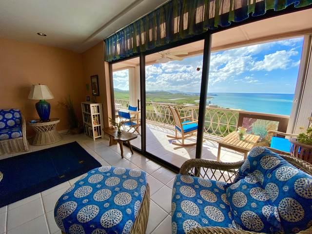 3 Coakley Bay Eb, St. Croix, VI 00820 (MLS #20-657) :: The Boulger Team @ Calabash Real Estate