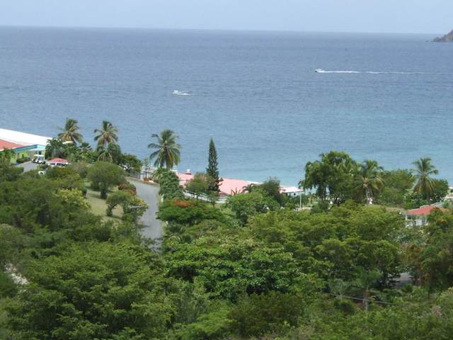 15-79 Frenchman Bay Fb, St. Thomas, VI 00802 (MLS #20-677) :: Hanley Team | Farchette & Hanley Real Estate