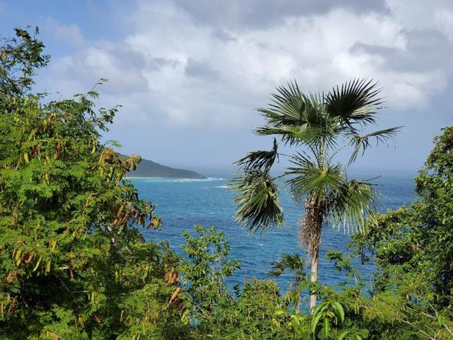 C-6-U Lovenlund Gns, St. Thomas, VI 00802 (MLS #20-68) :: Coldwell Banker Stout Realty