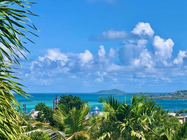 54 Orange Grove Co, St. Croix, VI 00820 (MLS #20-75) :: Hanley Team | Farchette & Hanley Real Estate