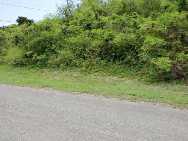 272 Enfield Green Pr, St. Croix, VI 00820 (MLS #20-778) :: Hanley Team | Farchette & Hanley Real Estate
