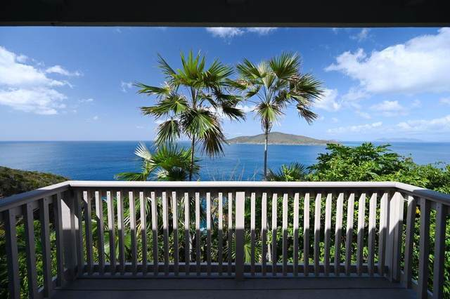 10-2-9 Peterborg Gns, St. Thomas, VI 00802 (MLS #20-814) :: Coldwell Banker Stout Realty