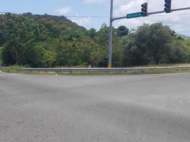 13-T V.I. Corp Lands Pr, St. Croix, VI 00850 (MLS #20-830) :: The Boulger Team @ Calabash Real Estate