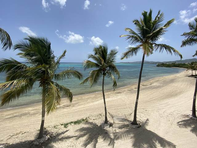 305 Golden Rock Co, St. Croix, VI 00820 (MLS #20-837) :: The Boulger Team @ Calabash Real Estate