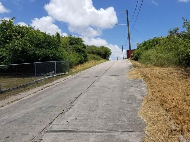 73 of 14 V.I. Corp Lands Pr, St. Croix, VI 00000 (MLS #20-843) :: Hanley Team | Farchette & Hanley Real Estate