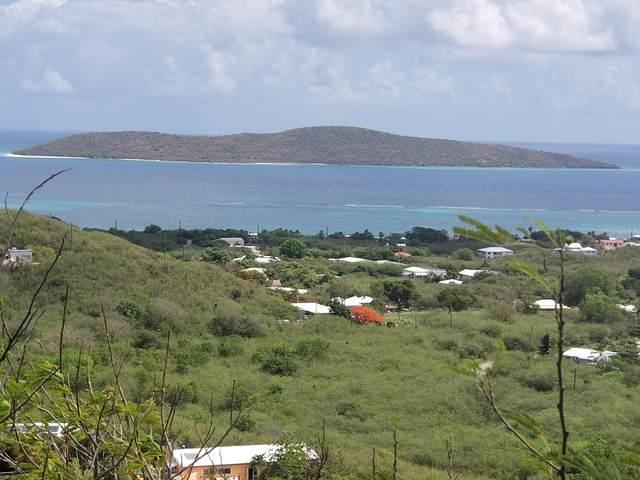 100 Hope & Carton H Eb, St. Croix, VI 00000 (MLS #20-845) :: Hanley Team | Farchette & Hanley Real Estate