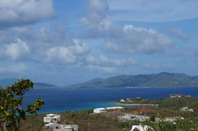 98-8-2 Smith Bay Ee, St. Thomas, VI 00802 (MLS #20-862) :: Hanley Team | Farchette & Hanley Real Estate