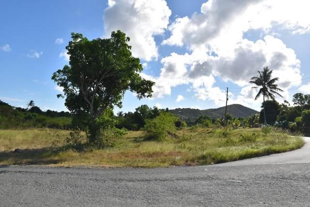 6 Grove Place Pr, St. Croix, VI 00840 (MLS #20-899) :: Hanley Team | Farchette & Hanley Real Estate