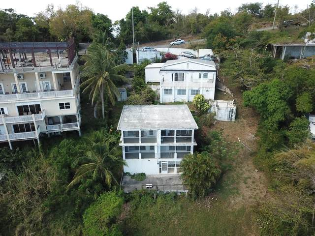 405A Hospital Ground New, St. Thomas, VI 00802 (MLS #20-912) :: Hanley Team | Farchette & Hanley Real Estate