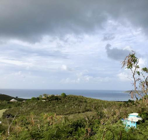 56 Seven Hills Ea, St. Croix, VI 00820 (MLS #20-913) :: Hanley Team | Farchette & Hanley Real Estate