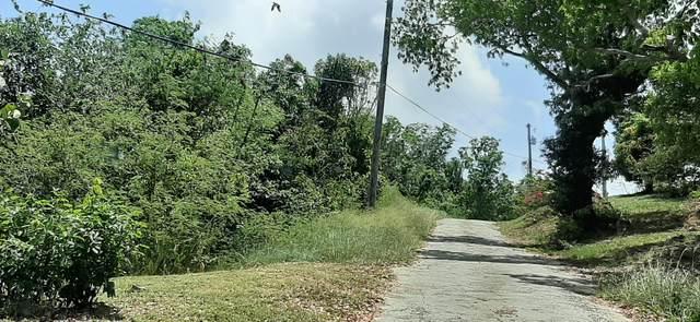 4C Little Fountain Ki, St. Croix, VI 00850 (MLS #20-930) :: Hanley Team | Farchette & Hanley Real Estate