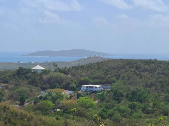 26-A Marienhoj Ea, St. Croix, VI 00820 (MLS #20-942) :: Hanley Team | Farchette & Hanley Real Estate