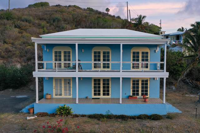 55 Turner's Hole Eb, St. Croix, VI 00820 (MLS #20-971) :: The Boulger Team @ Calabash Real Estate