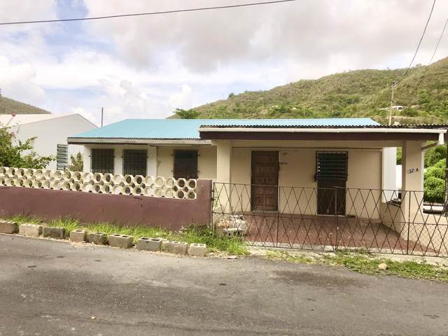 37 of 42 Eliza's Retreat Ea, St. Croix, VI 00820 (MLS #20-981) :: Coldwell Banker Stout Realty