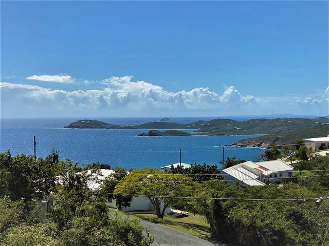 1-3 Rem Bakkero Fb, St. Thomas, VI 00802 (MLS #20-983) :: Hanley Team | Farchette & Hanley Real Estate