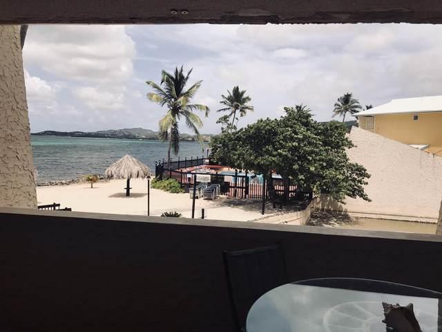 202 Golden Rock Co, St. Croix, VI 00820 (MLS #21-1001) :: Hanley Team | Farchette & Hanley Real Estate