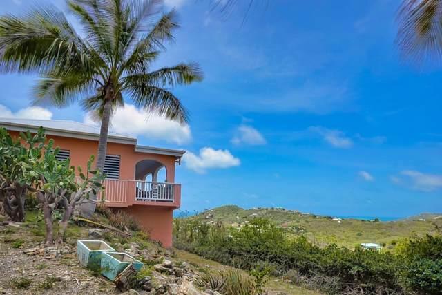 68 Hope & Carton H Eb, St. Croix, VI 00820 (MLS #21-1012) :: Hanley Team | Farchette & Hanley Real Estate
