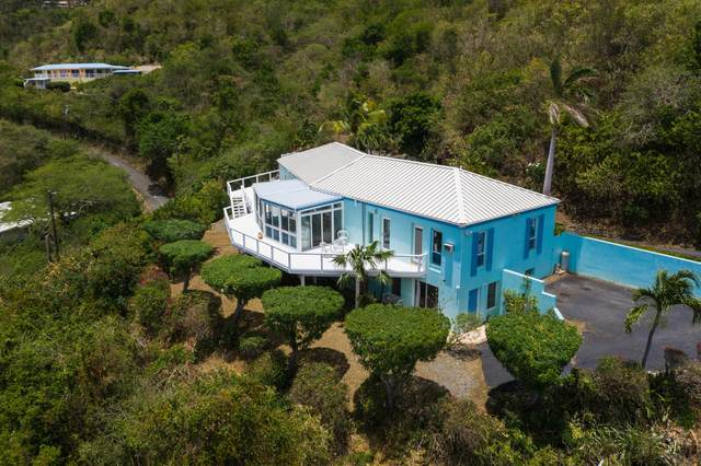 24 & 24A All For The Betr Ea, St. Croix, VI 00820 (MLS #21-1016) :: Hanley Team | Farchette & Hanley Real Estate
