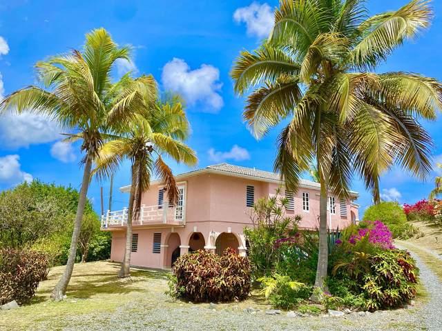 90 Anna's Hope Ea, St. Croix, VI 00820 (MLS #21-1019) :: The Boulger Team @ Calabash Real Estate